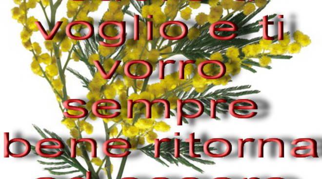 Gli Auguri Di Michele Pappacoda Per La Festa Della Donna 8marzo 2010