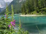Lago2.jpg
