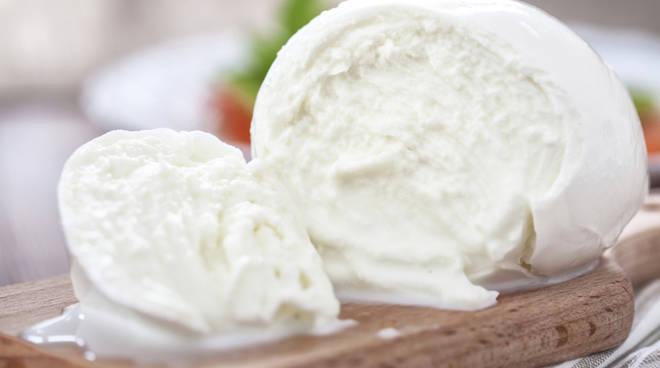 Mozzarella-Bufala.jpg