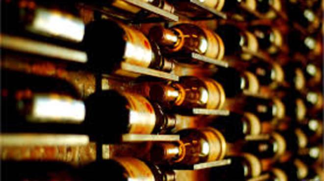 vino-truffa-toscana-avvisi