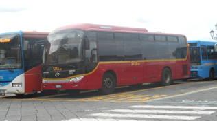 sita bus