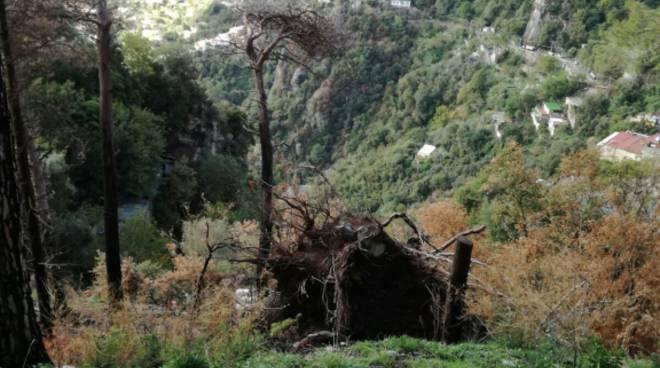 Positano-Montepertuso-dopo-il-diluvio-6.jpg