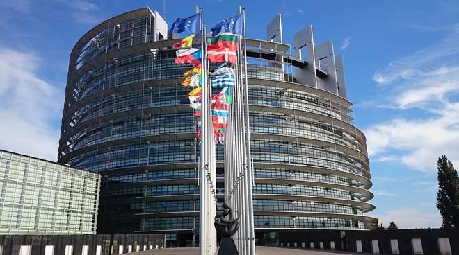 Dall'idea al team: Re-Generation (Y)outh al Parlamento Europeo