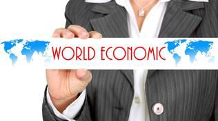 Ego International PMI