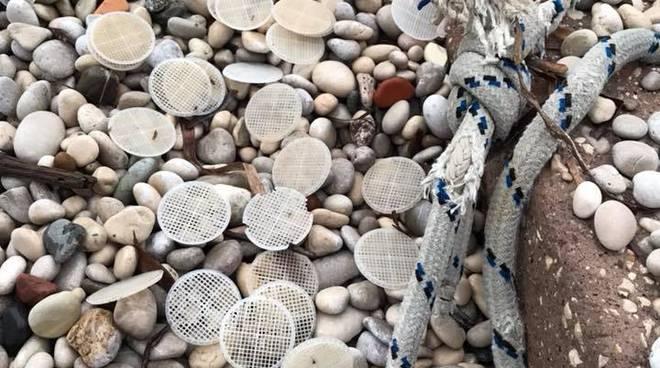 Litorale laziale invaso da migliaia di filtri di plastica
