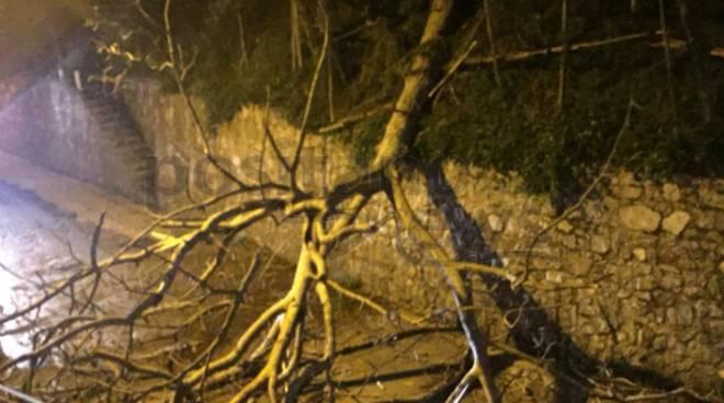 Tramonti vento albero Gete casa salsano