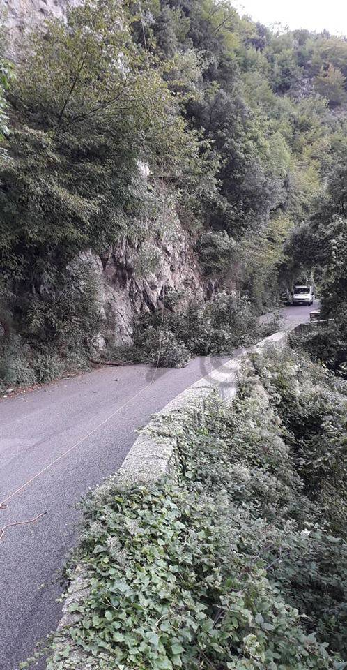 Valico di Chiunzi chiuso, taglio vegetazione