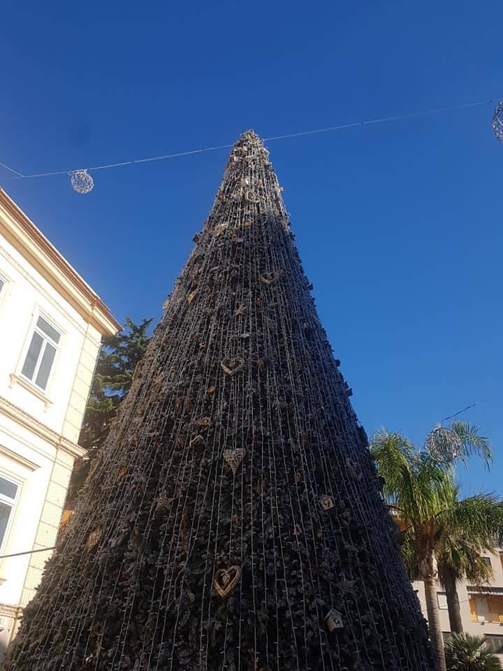 albero-a-sant-agnello-3238065