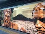 Livrea d'arte per i treni Metrostar