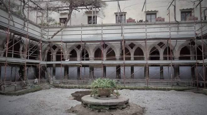 Abbattuto il salice piangente del chiostro di San Francesco