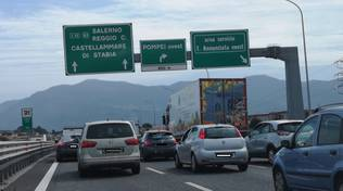 incidente tra cavallo e camion in autostrada