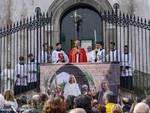 Domenica delle Palme 2019 in Penisola Sorrentina