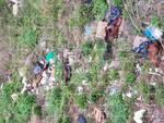 Valico di Chiunzi rifiuti cimitero animali