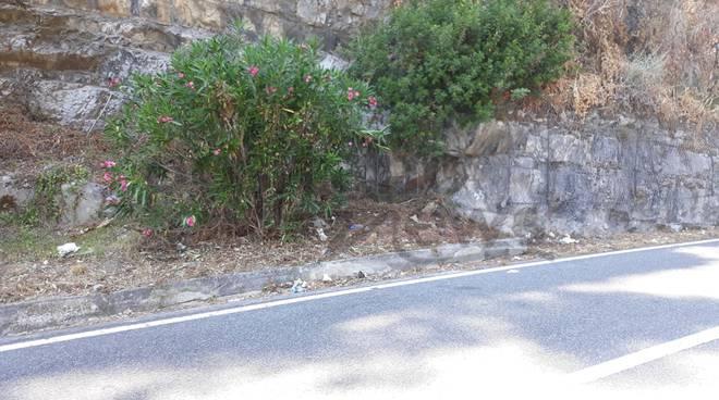 L'Amalfitana piena di Rifiuti. Chi deve pulire la S.S. 163?