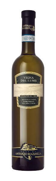arturo terminiello angolo dei vini