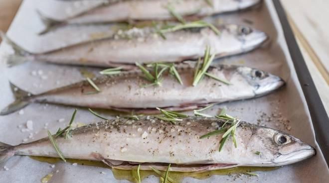 La sagra del pesce azzurro di Atrani (SA)