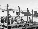 Festa del Pesce Story