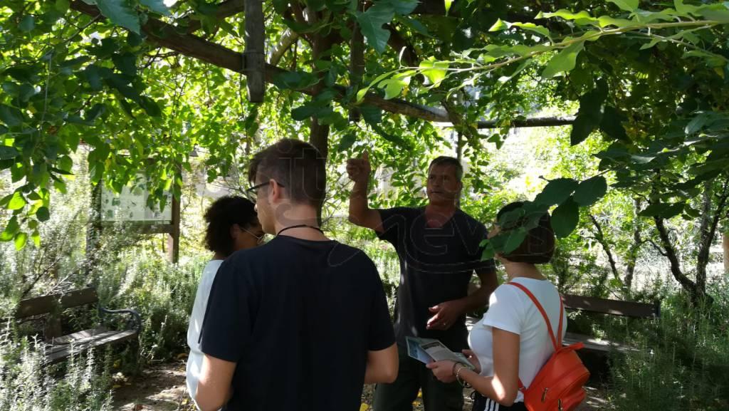 Oasi in Città Sant'Agnello con Alternanza Liceo Marone
