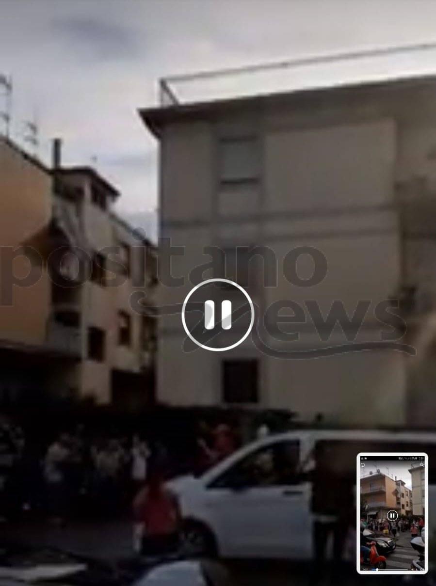 Sant'Agnello. Cani maltrattati