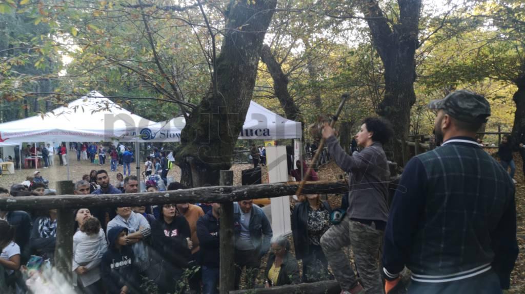 Vico Equense. Festa della castagna a Monte Faito