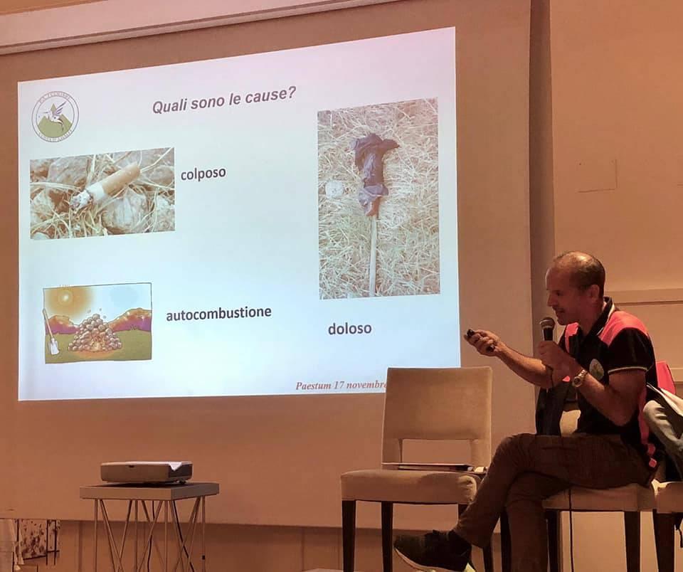 colibrì borsa mediterranea del turismo archeologico incendi boschivi costiera amalfitana