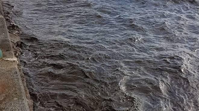 mare nero salerno