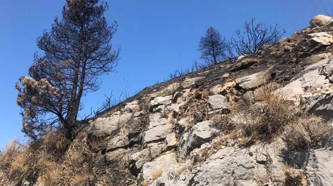 Monte Faito, il Parco detta i tempi degli interventi
