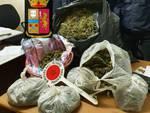 salerno 19 kg marijuana