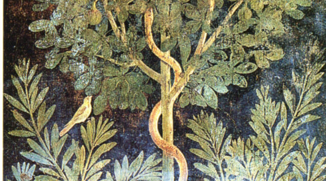 """Parco Archeologico di Pompei, presto \""""La Casa del Frutteto\"""" sarà aperta al pubblico."""