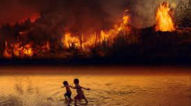Sorrento.  In una mozione la vicinanza e solidarietà per il disastro ambientale in Amazzonia