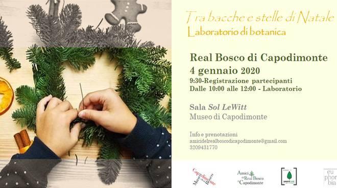 Capodimonte - Laboratorio botanica 4 gennaio arbc