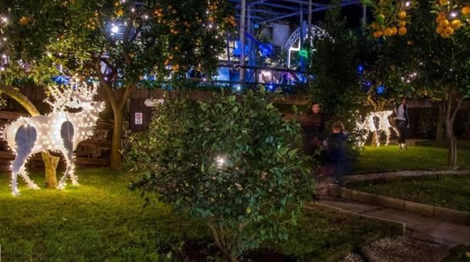 giardino villa fiorentino
