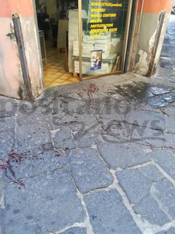 Piano di Sorrento. Cane investito in Via San Michele: le foto orribili del sangue in strada