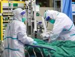 medici coronavirus
