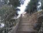 Soricelli la benedizione delle Palme dal Castello di Cava