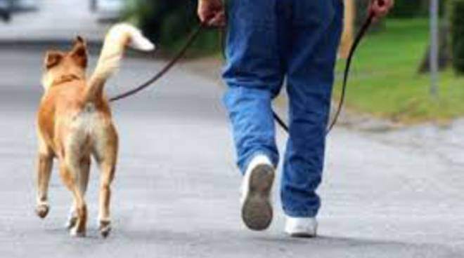 Uscita col cane