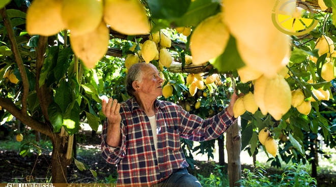 Storie di ripartenza: Amalfi Lemon Tour