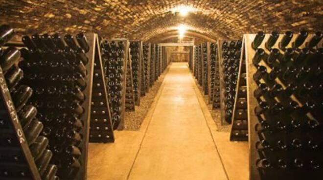 Come conservare correttamente il vino in cantina