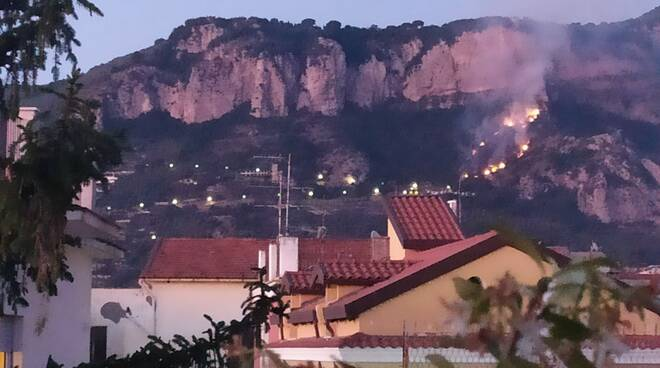 Incendio Alberi sera