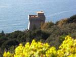 Paesaggi in movimento, itinerari d\'arte in Campania