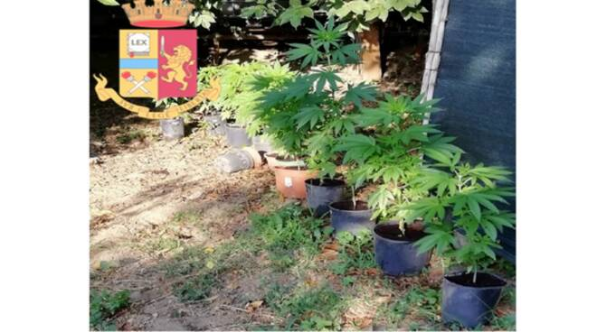 cannabis sequestrata cava de tirreni