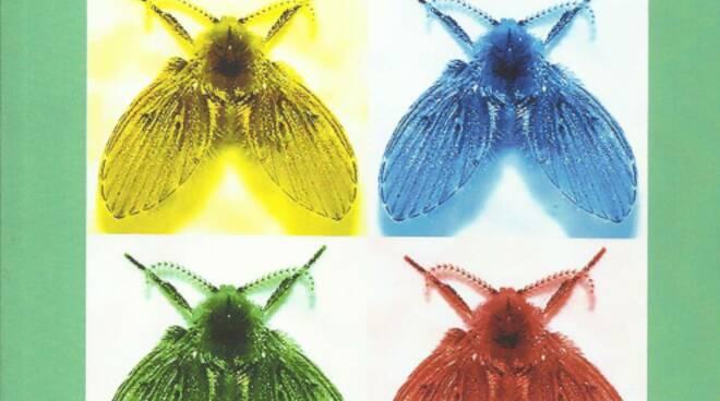 Anche le mosche nel loro piccolo sanno di letteratura.