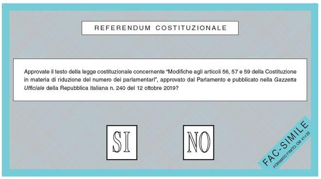referendum scheda di voto