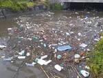 rifiuti in mare