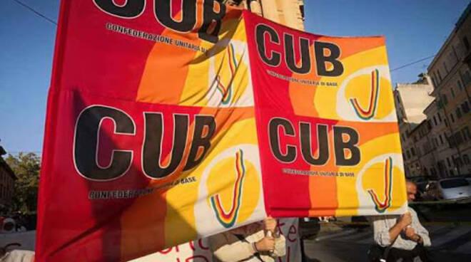 cub campania