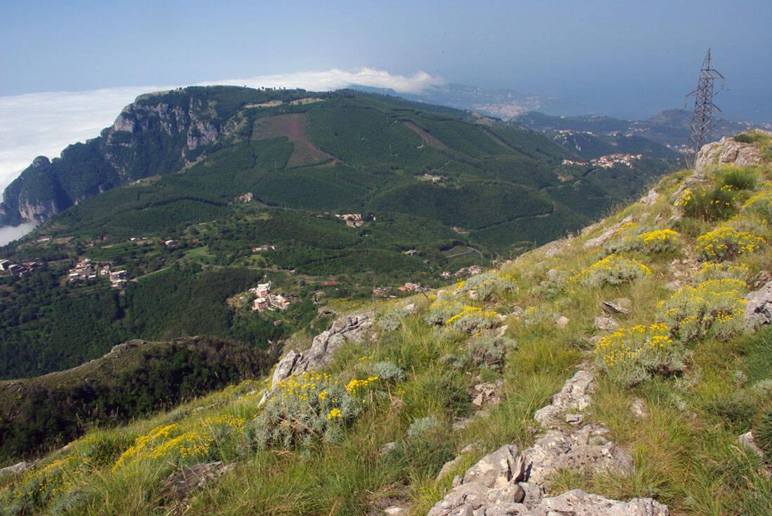 Nuovi tralicci dell\'alta tensione sulla dorsale dei Monti Lattari. La denuncia del Wwf e Italia Nostra.