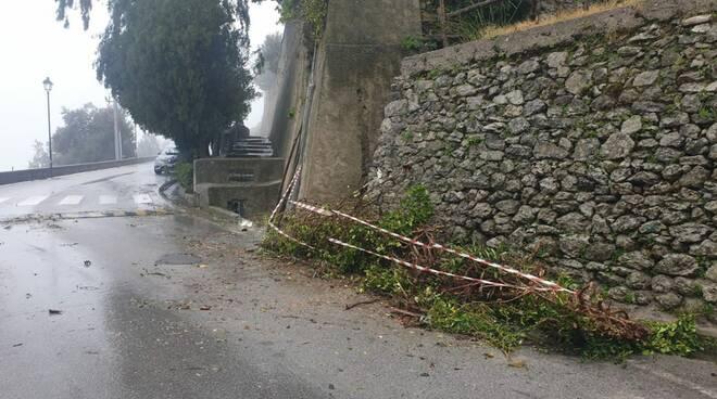 Scala, strada all'altezza del ristorante Zi' Ntonio liberata: rimosso l'albero abbattuto dal vento