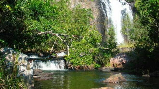Congo foresta amazzonica