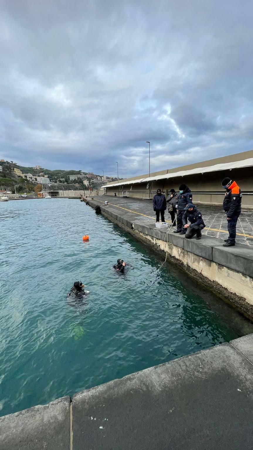 Corpo balenottera individuato a 20 metri di profondità nel porto di Sorrento.