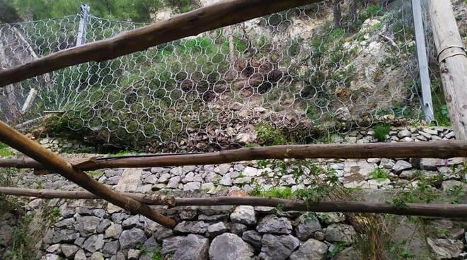 Maltempo ad Amalfi: abbattuti due grossi alberi alle spalle della passeggiata Longfellow